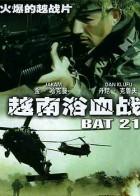 越南浴血战