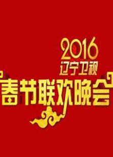 辽宁卫视2016春晚mp4下载