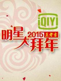 2015央视明星大拜年