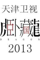 藏龙卧虎 2013