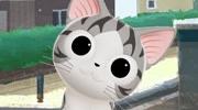 甜甜私房猫 第3季