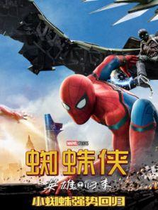 蜘蛛侠英雄归来国语
