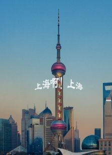上海啊!上海(剧情片)