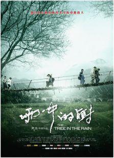 雨中的树(剧情片)