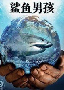 蓝鲨鱼图片