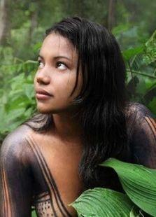 BBC:亚马逊争夺战