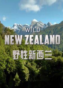 BBC:野性新西兰