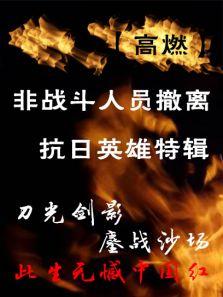 抗日英雄志(内地剧)