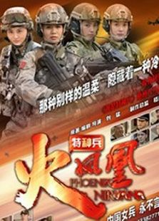 我是特种兵之火凤凰(DVD版)