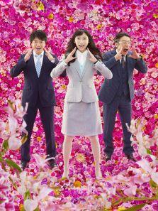 花咲舞无法沉默2