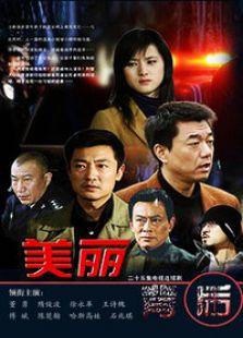 美丽背后(2013版)(国产剧)