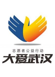 2016大爱武汉志愿者公益行动
