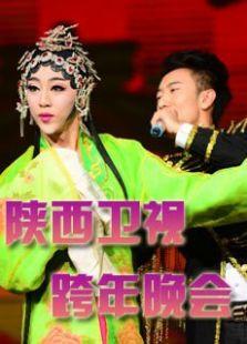 2014陕西卫视跨年(新年雁塔祈福活动 )