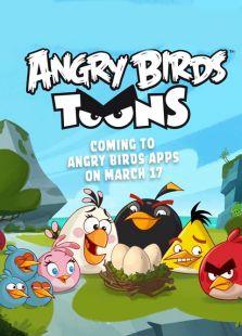 愤怒的小鸟第1季