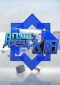 股舞飞阳 2012