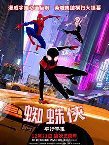蜘蛛俠平行宇宙